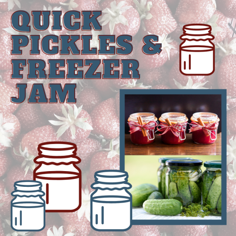 "A graphic depicting jars of jam and pickles with the text ""Quick Pickles & Freezer Jam"""